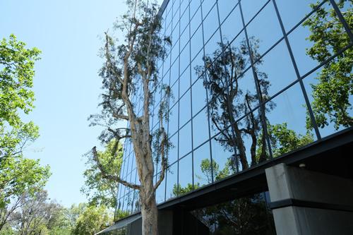 estate planning attorneys in Woodland Hills California